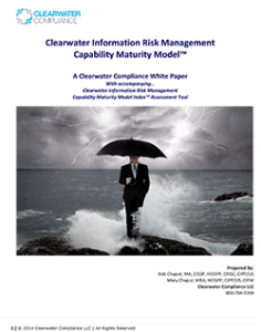th_Clearwater-Information-Risk-Management-Maturity-Model_cover-1-236x300